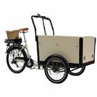 eco-friendly sightseeing tricycle cargo bike