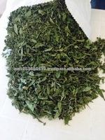 Stevia Dried Leaf/Organic Stevia Dried Leaf