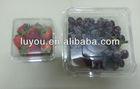 ventilated holes PET plastic fruit container