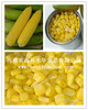 canned sweet corn canned food