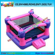 Hot Selling Professional Mini Inflatable Castle (FUNMINI1-001)