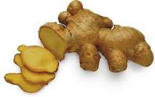 Ginger New Crop 2014 from Hoang Kim Vietnam