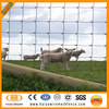 Top-selling direct supplier professional goat farm fence (ISO & CE factory)