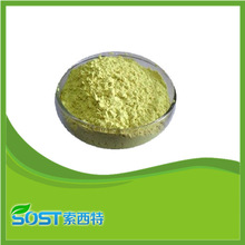 High quality factory supply wholesale quercetin extract