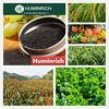 Huminrich Shenyang 65HA+15FA+12K2O Super Potassium Humate Extracted From Leonardite