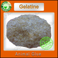 Vente en vrac comestibles de gélatine