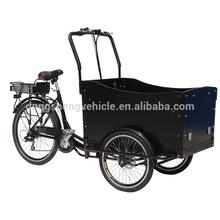 Elétrico de 3 rodas de carga da bicicleta com freio a disco