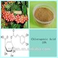 Polvere di caffè verde estratto con acido clorogenico 10%