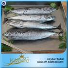 Fish and Seafoood Frozen Bonito WR