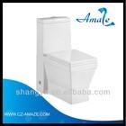 Sanitary Ware TOTO Toilet