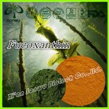 Natural Kelp Extract /Seaweed extract /Fucoxanthin