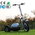 de la rueda 3 baratos 2013 nuevo scooter eléctrico