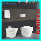 ladies bathroom suite back to wall toilet and bidet