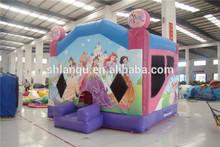 Indoor Bouncy Castle/ Cheap Indoor Bounce House