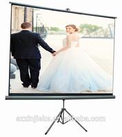 Optical high gain projector screen