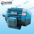 220v par de alta y baja de rpm del motor eléctrico del ascensor de tres fase de inducción de motor de 5 hp