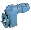F Series parallel shaft gear motor