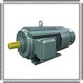 220v motor de indução ac watt de baixa velocidade e alto torque do motor elétrico impermeável