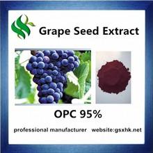 high quality organic 95% grape seed extract