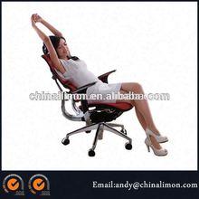 Ergohuman mesh office chair