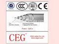 todos condutor de alumínio tipo de aac cabo de alimentação com alta qualidade e preço competitivo fabricante