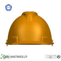 ABS novelty helmets with tassel air vents
