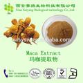 Pure Natural Maca extrato, A erva medicina para ampliar pênis / Maca root pó