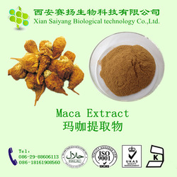 Pure Natural Maca Extract,A Herb Medicine To Enlarge Penis/maca root powder