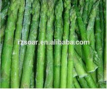 อร่อยiqf/หน่อไม้ฝรั่งสีเขียวแช่แข็งจากประเทศจีน