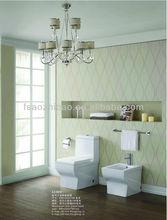 bathroom ceramic toilet 51001