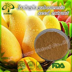 Irvingia gabonensis seed extract powder/wild mango seed extract