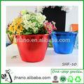 attraente mini colorati fioriera