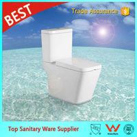 A2507 foshan sanitary ware toilet logo