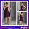 2014 New Designer Beautiful A Line One Shoulder Zipper Back Pleated Bodice Short Chiffon Wine Bridesmaid Dresses (AB0786)