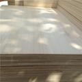 mejor venta de kiri sólido maderas en el mercado europeo