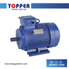 MS SERIES THREE PHASE INDUCTION MOTOR AC MOTORS AC ASYNCHROUS MOTORS