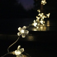 NEW 5m 50 Led Blossom Solar Fairy Lights for Garden Christmas Party Yard Outdoor