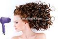 sèche cheveux tuyau