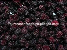 2014 New season Frozen Blackberry from China frozen Blackberry supplier