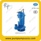 Vertical inline centrifugal submersible sewage pump