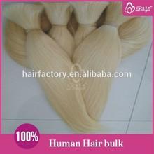 Hot Selling Wholesale Human Hair Bulk