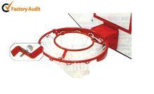The Rebound Basketball Ring