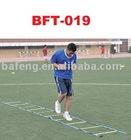 Training tool - Speed ladder