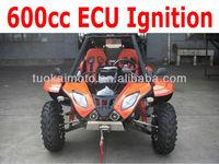 600cc EEC Dune buggy (TKG600)