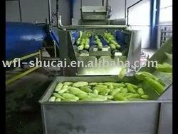 Cucumber Washer/Cucumber Washing Machine