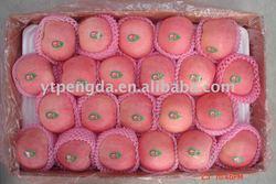 High quality hot sale famous Yantai fresh fuji apple