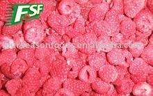 2012 crop IQF Raspberry