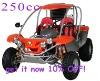 250cc water-cooled CVT EEC Go kart (TKG250E-A)