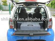 2/4 Seats Battery Electric Car