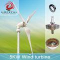 Piccolo 5kw turbina eolica per la casa muove elettricità ( su - griglia )
